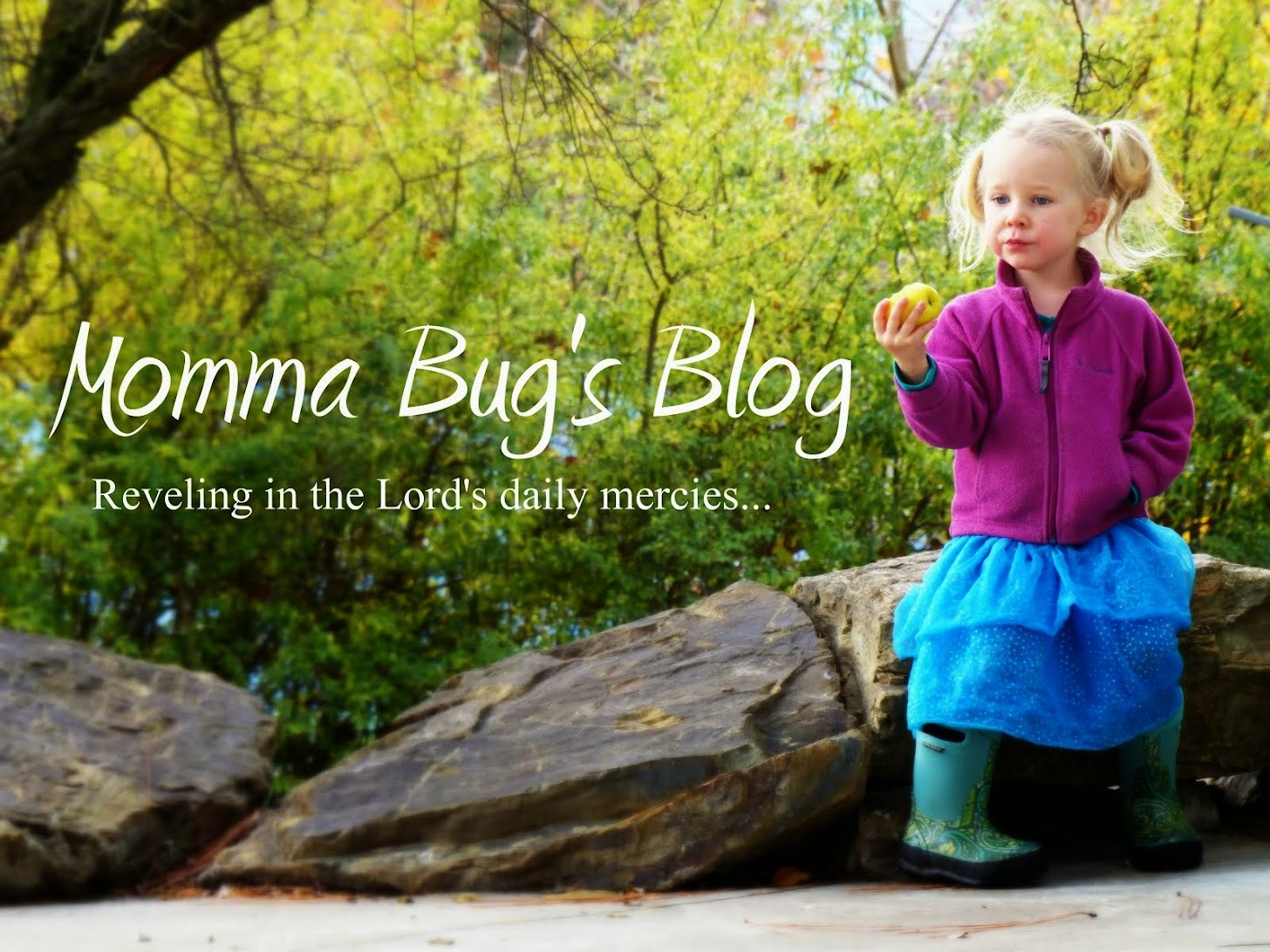 Momma Bug's Blog