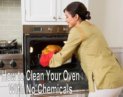 Quick N Brite Quick Cleaning Tips How To Clean Your Oven