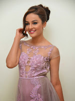 Seerath Kapoor Glamorous photos at Tiger Audio launch-cover-photo