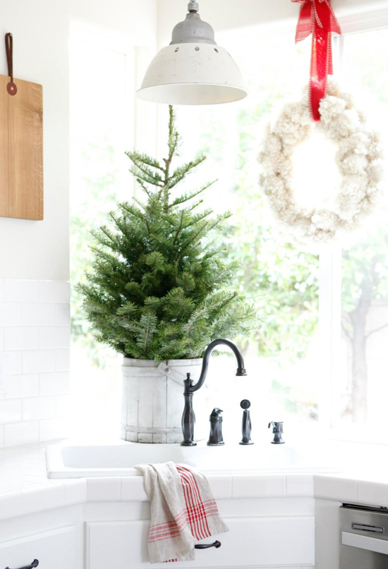 Beautiful small tree in a bucket on the countertop of Dustylu's kitchen.