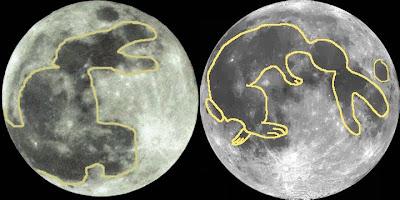 Lua e a Lebre