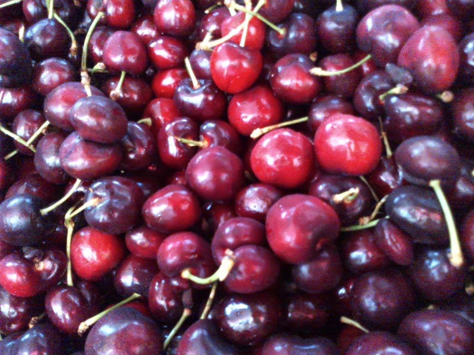 the produce savant red vs white
