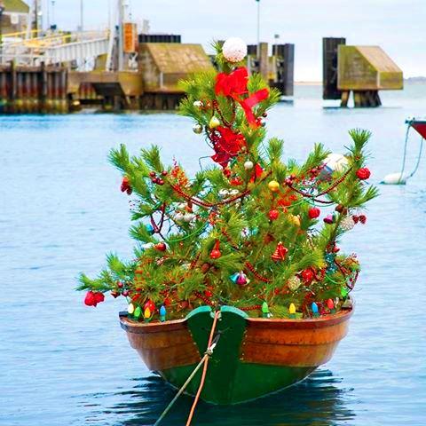 <b>Feliz Natal!</b> Merry Christmas!