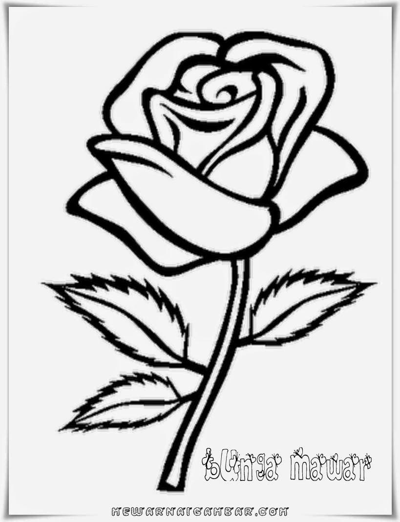 Gambar Mewarnai Bunga Mawar