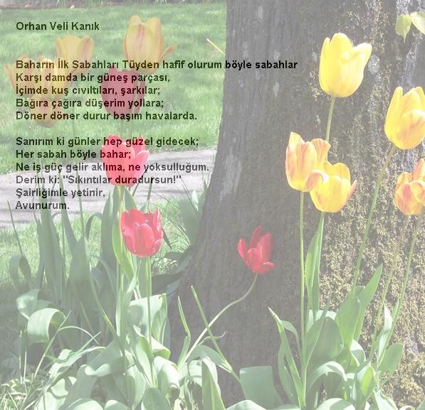 Doğa Ve Insan Doğa şiirleri