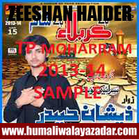 http://ishqehaider.blogspot.com/2013/07/zeeshan-haider-nohay-2014.html