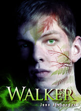 Walker - a shamanic novel for teens