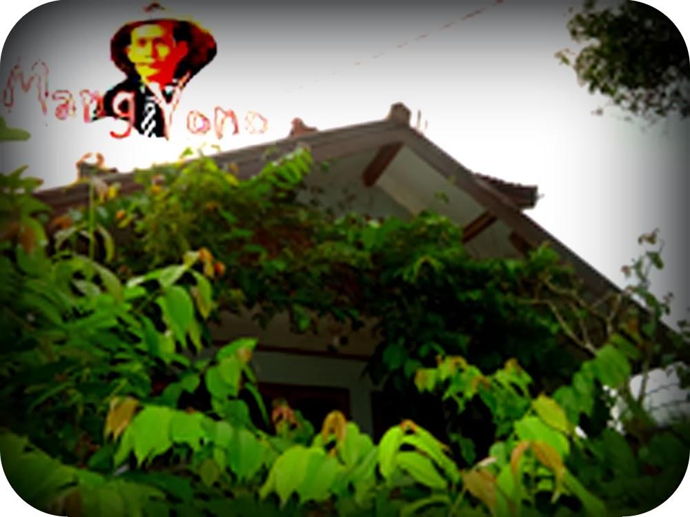 Keuntungan dan manfaat Bunga, pohon atau tanaman di sekitar rumah kita.