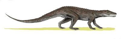 Erpetosuchus