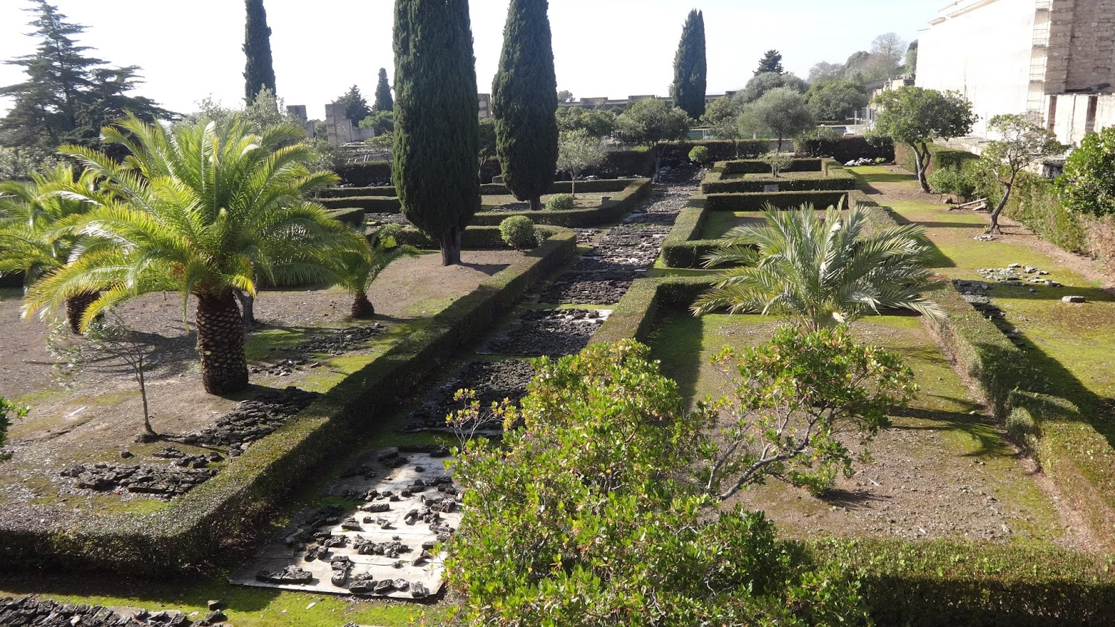 Volviendo a medina azahara conmimochilacuestas for Arboles altos para jardin