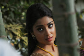 Shriya Saran latest Photos in saree-thumbnail-6