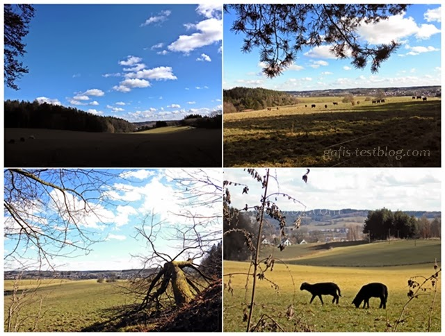 Bayerische Landschaft im Februar