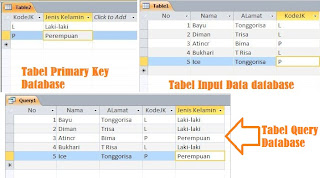 Tabel Primary Key, Tabel Input data dan Tabel Query Database