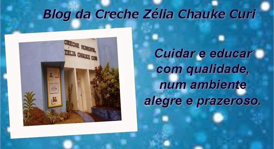 Creche Zélia Chauke Curi