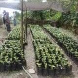 Environment Work