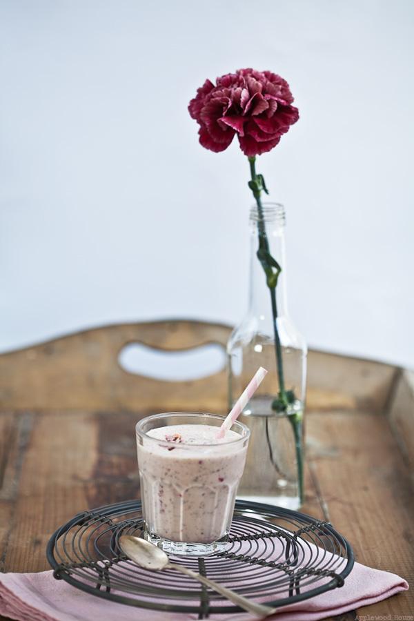 Blizzard Himbeer Cranberry Joghurt Vanilleeis