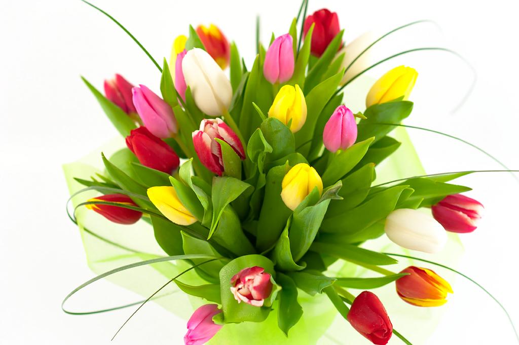Купить цветы в одинцово круглосуточно служба доставки цветов кемерово