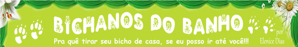 Bichanos do banho à domicílio de Elenice Dias - RJ