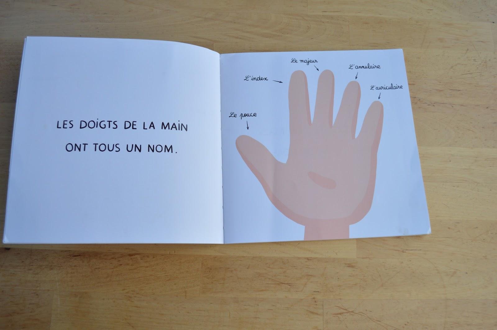 Worksheet. Educando a cuatro El libro del mes Los dedos de los pies no