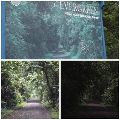 Pesona Indonesia; Wisata Alam di Banyuwangi