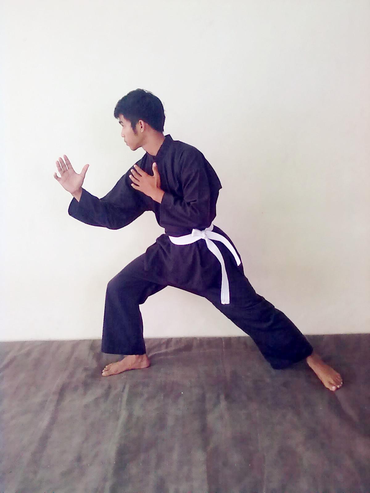 5 Teknik Dasar Taekwondo Beserta Gambarnya