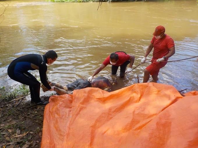 Corpo em estado avançado de decomposição é encontrado no Rio Itapecuru!!!