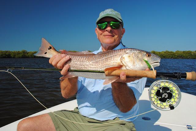 The pine island angler matlacha fishing report redfish for Sally t fishing