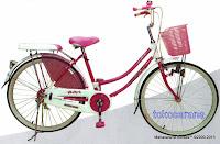 City Bike Evergreen H-1 Royal Princess 26 Inci