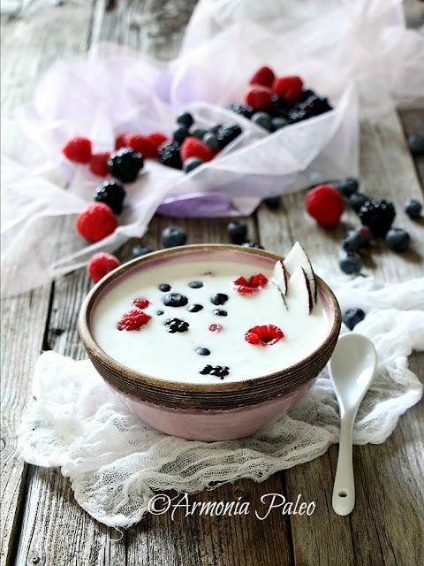 Porridge Crudista di Cocco ai Frutti di Bosco di Armonia Paleo