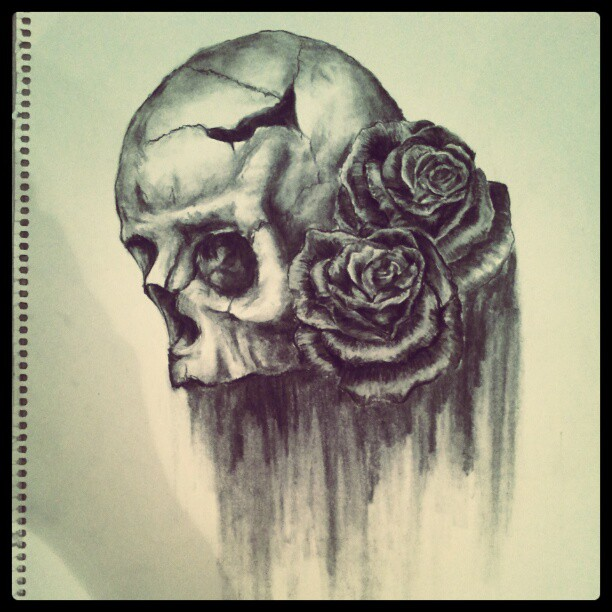The gallery for --> Skull With Rose Eyes Drawing