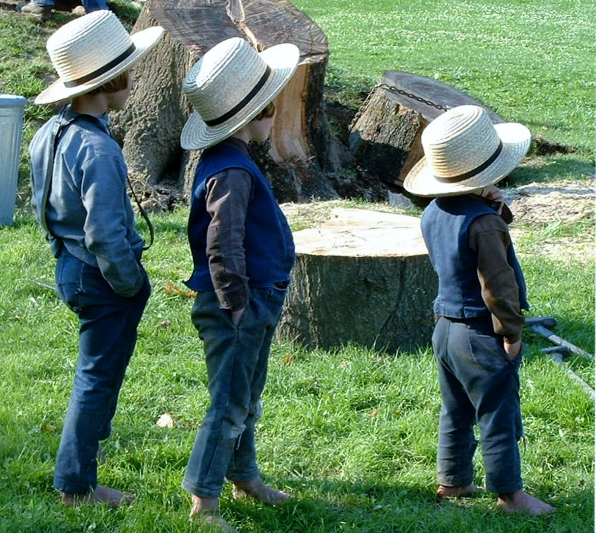 Photo of three Amish boys