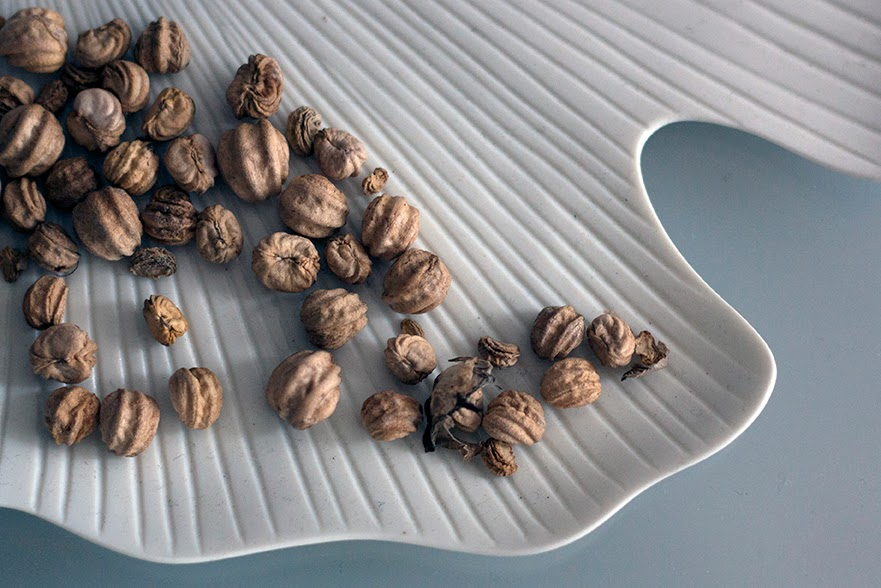 nuts on white plate