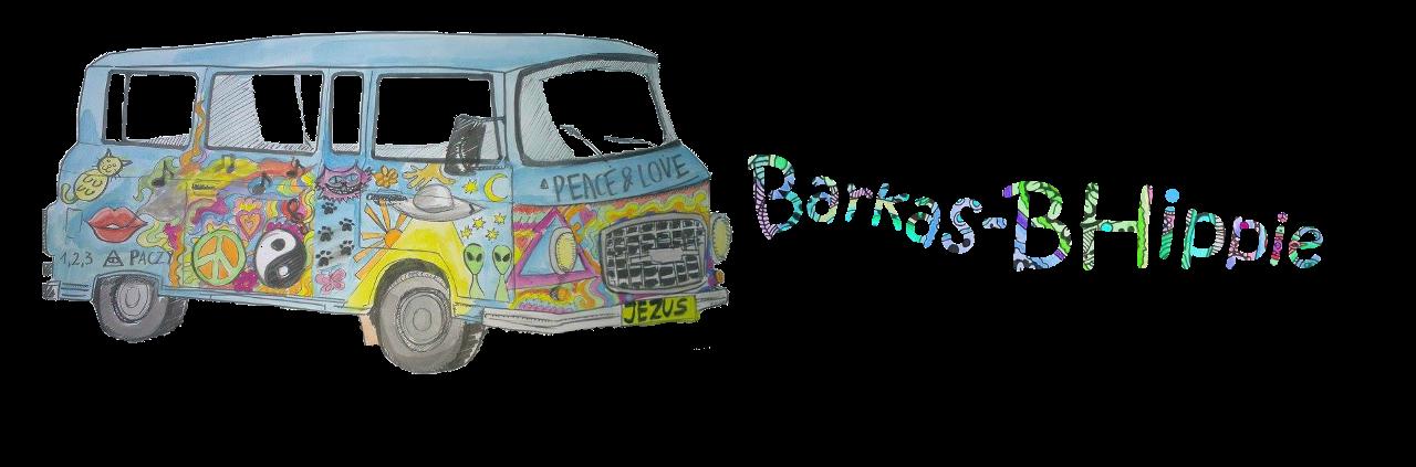 Barkas B-Hippie