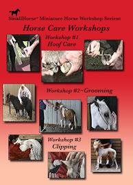 Horse Care SET DVD