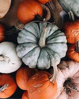 Novembre - La zucca