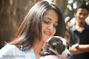 Anushka with Puppy at Blue Cross Pet Carnival Press meet-thumbnail-12