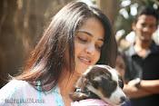 Anushka with Puppy at Blue Cross Pet Carnival Press meet-thumbnail-12