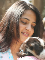 Anushka with Puppy at Blue Cross Pet Carnival Press meet-cover-photo