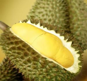 Buah durian dilarang untuk ibu hamil