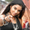 Bollywood actress asin Pics