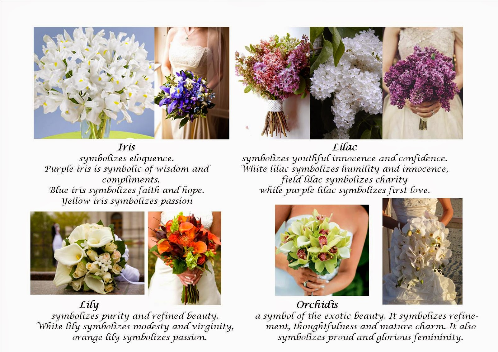 The Meaning Of Flowers And Flower Significance Flower With Styles