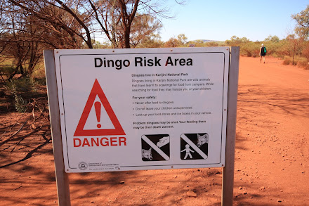 "Dingo risk are ""the camp grounds"""