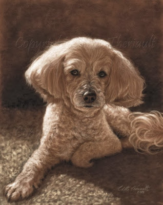 poodle maltese mix painting of pet portrait by Colette Theriault