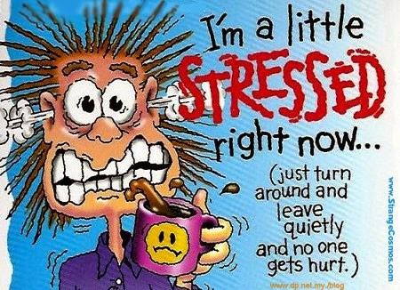 Mengawal Stress Dengan Berkesan