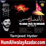 http://audionohay.blogspot.com/2014/10/tamjeed-hyder-nohay-2015.html
