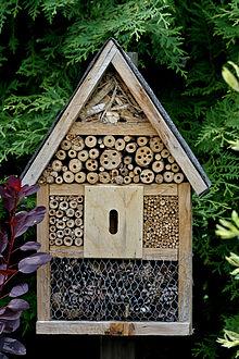 le blog de clesa h tel pour insectes. Black Bedroom Furniture Sets. Home Design Ideas