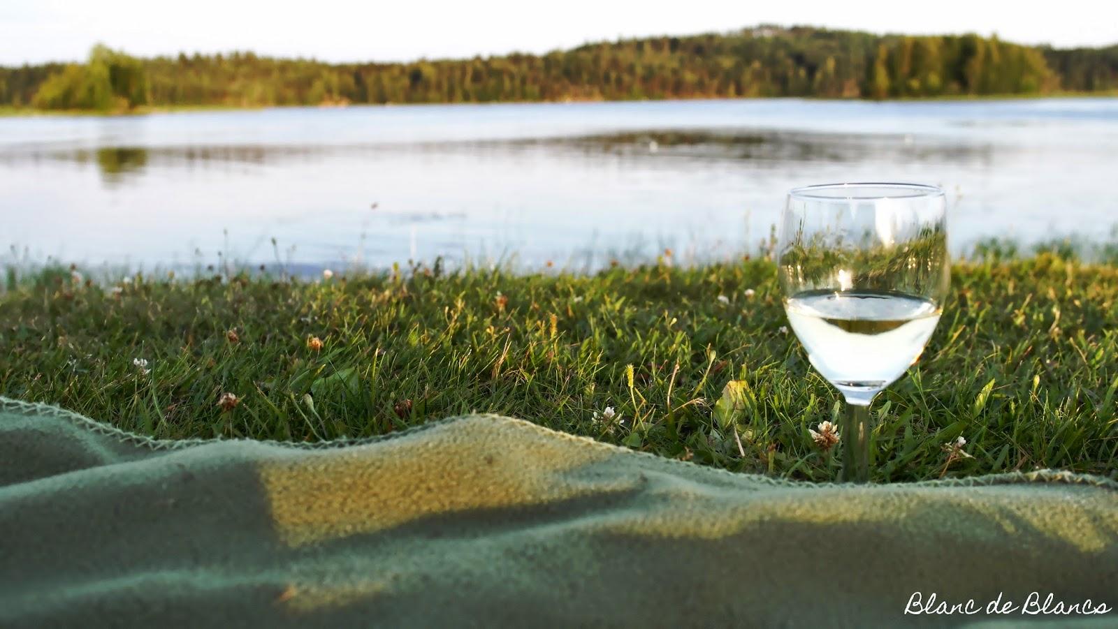 Valkoviini, ilta-aurinko ja Pielinen - www.blancdeblancs.fi