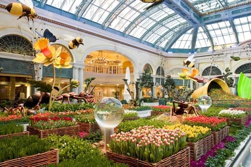 Bellagio Conservatory Botanical Gardens Cam Las Vegas