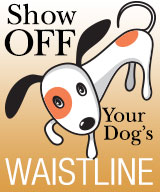 Show Off Your Dog's Waistline