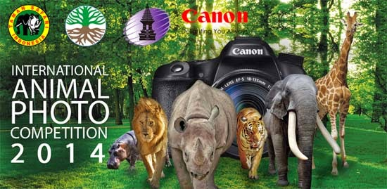 Lomba Foto Satwa Internasional 2014 (International Animal Photo Competition)